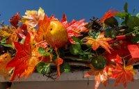 Autumn market, Náměstí Republiky