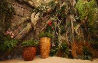 Imitation - jungle, showroom