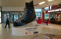 Ice hockey skate - 350*290*160 cm