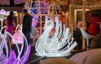Swan (LED, metal, feather) - 150*150 cm